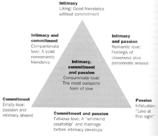 Eine Dreieckstheorie der Liebe